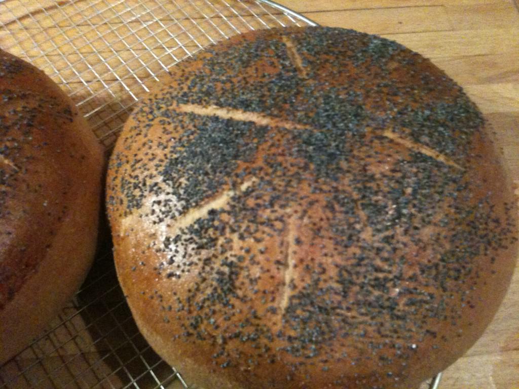 Runde brød med blå birkes